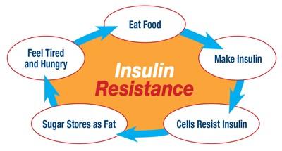 Insulin Resistant