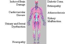 How Diabetes Affects the Body