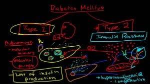Diabetes Mellitus Pathophysiology